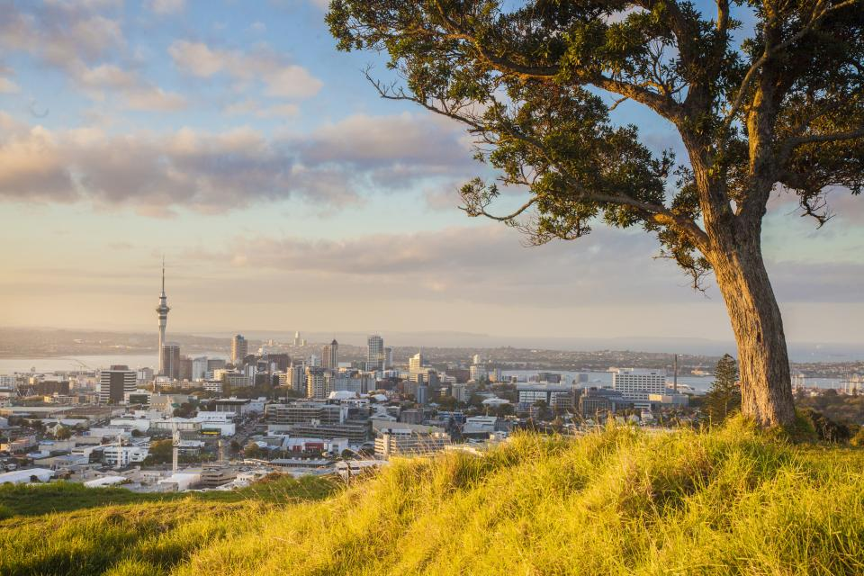 Auckland Car Rental